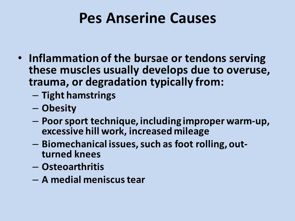 Pes Anserine Causes Inflammation of the bursae or tendons serving these muscles usually develops due to overuse, trauma, or degradation typically from