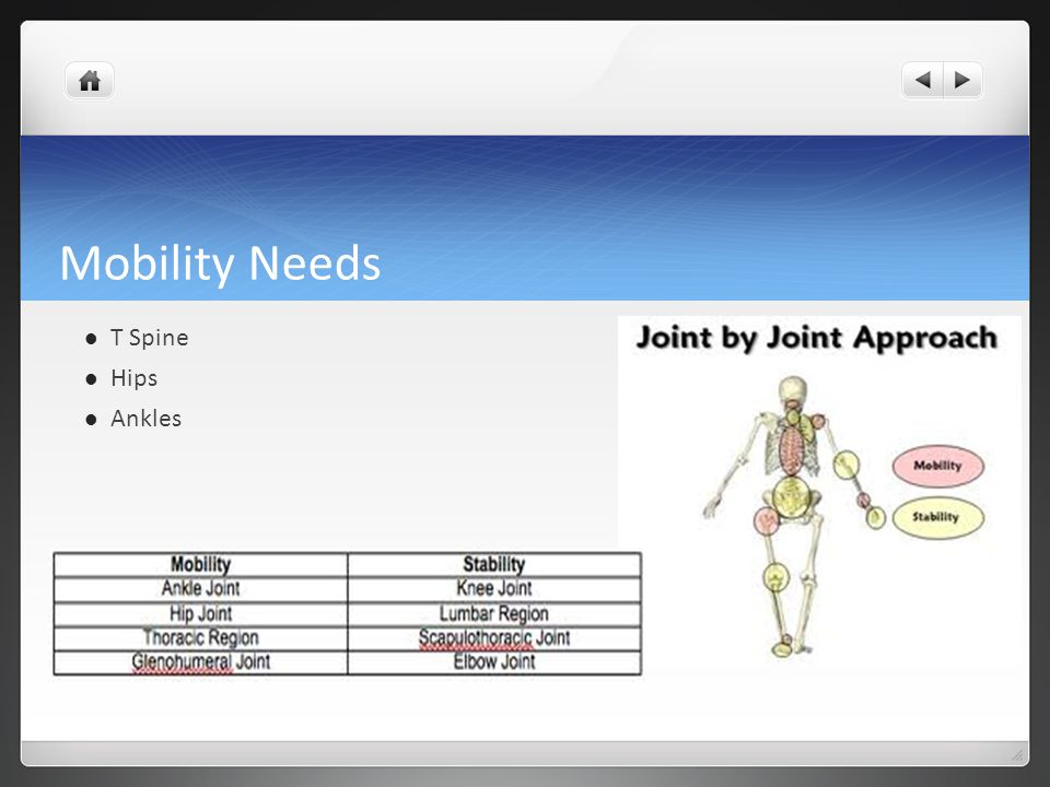 Mobility Needs T Spine Hips Ankles