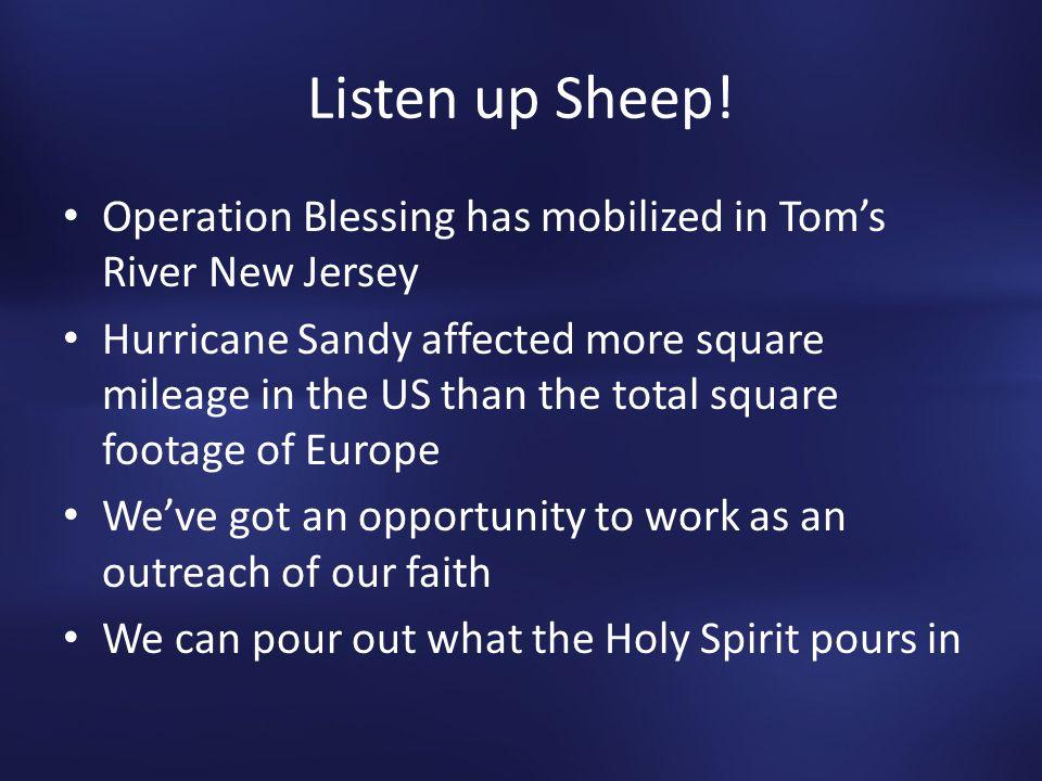 Listen up Sheep.