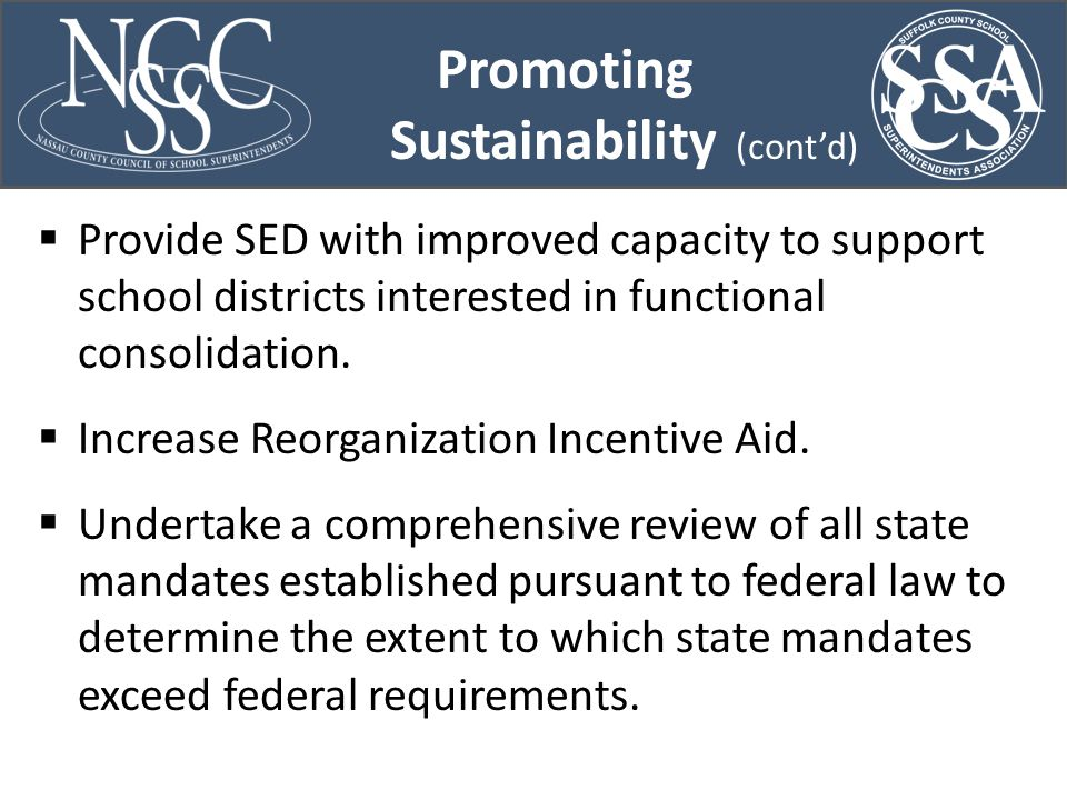 Promoting Sustainability (cont'd)  Provide SED with improved capacity to support school districts interested in functional consolidation.