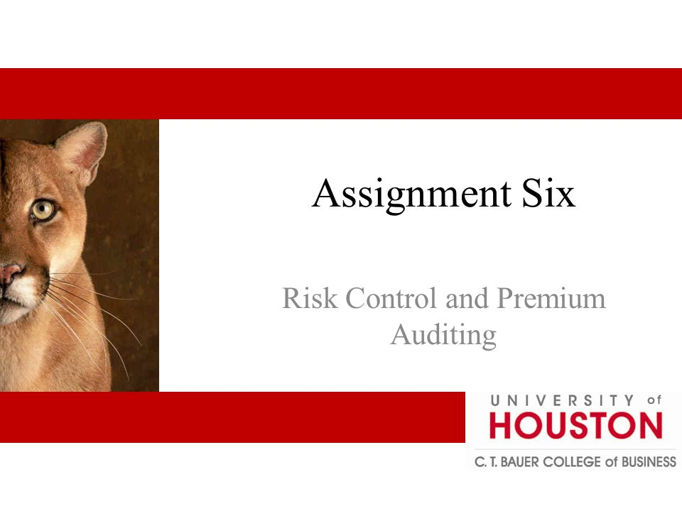 Premium Audit & Other Functions Underwriting – proper classifications and price Account – desirability reflects management Marketing – may be only person from insurance company seen Claims – verify employment Risk control 6 - 22