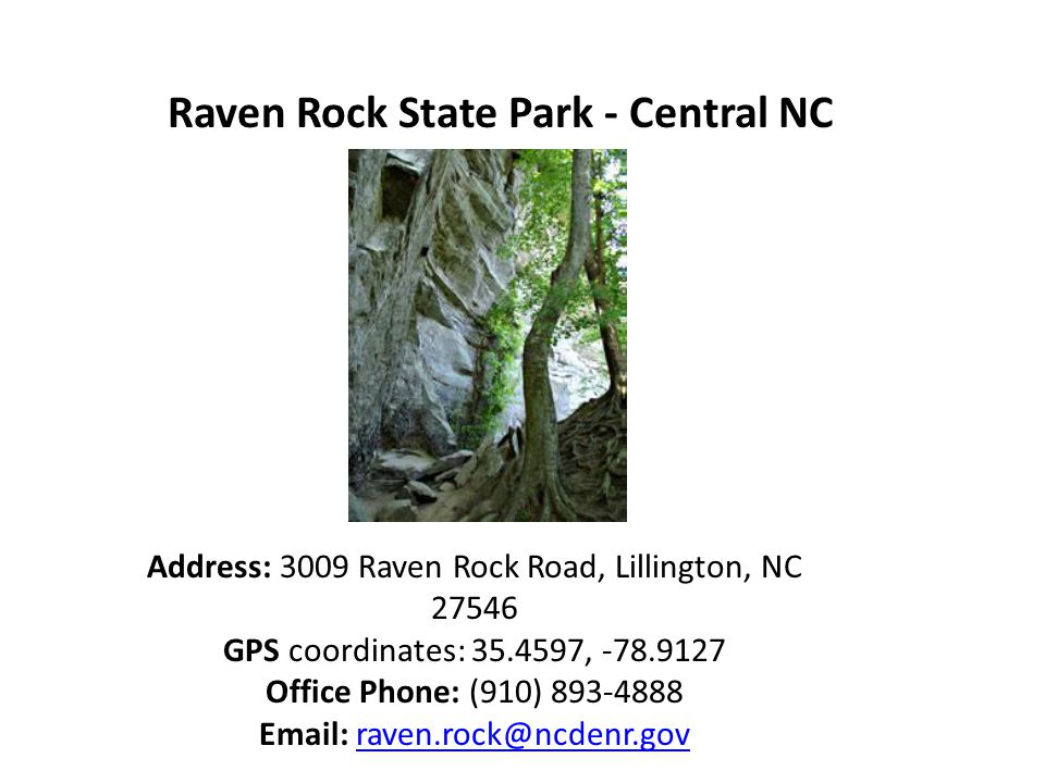 Raven Rock State Park - Central NC Address: 3009 Raven Rock Road, Lillington, NC 27546 GPS coordinates: 35.4597, -78.9127 Office Phone: (910) 893-4888 Email: raven.rock@ncdenr.govraven.rock@ncdenr.gov