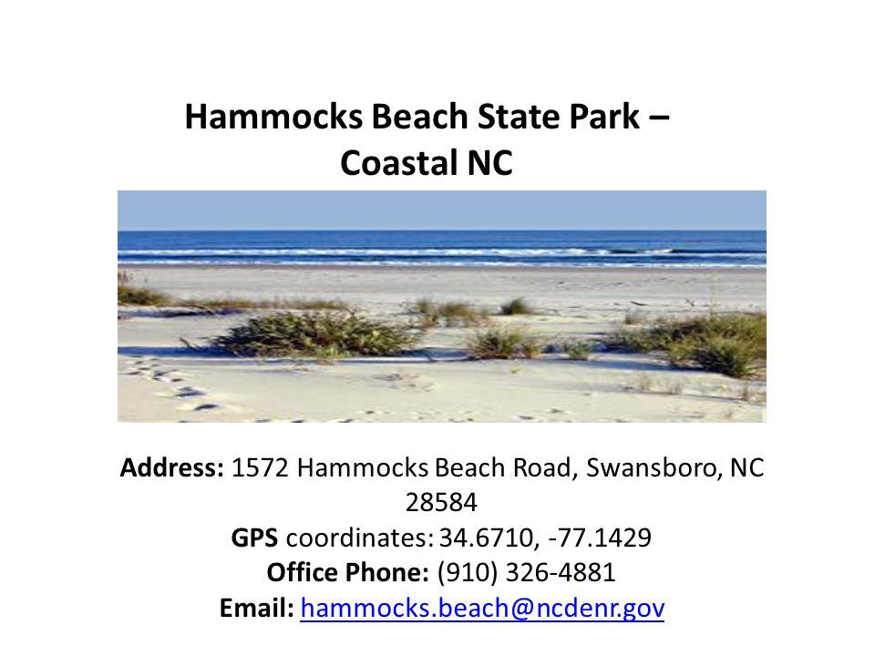 Hammocks Beach State Park – Coastal NC Address: 1572 Hammocks Beach Road, Swansboro, NC 28584 GPS coordinates: 34.6710, -77.1429 Office Phone: (910) 326-4881 Email: hammocks.beach@ncdenr.govhammocks.beach@ncdenr.gov