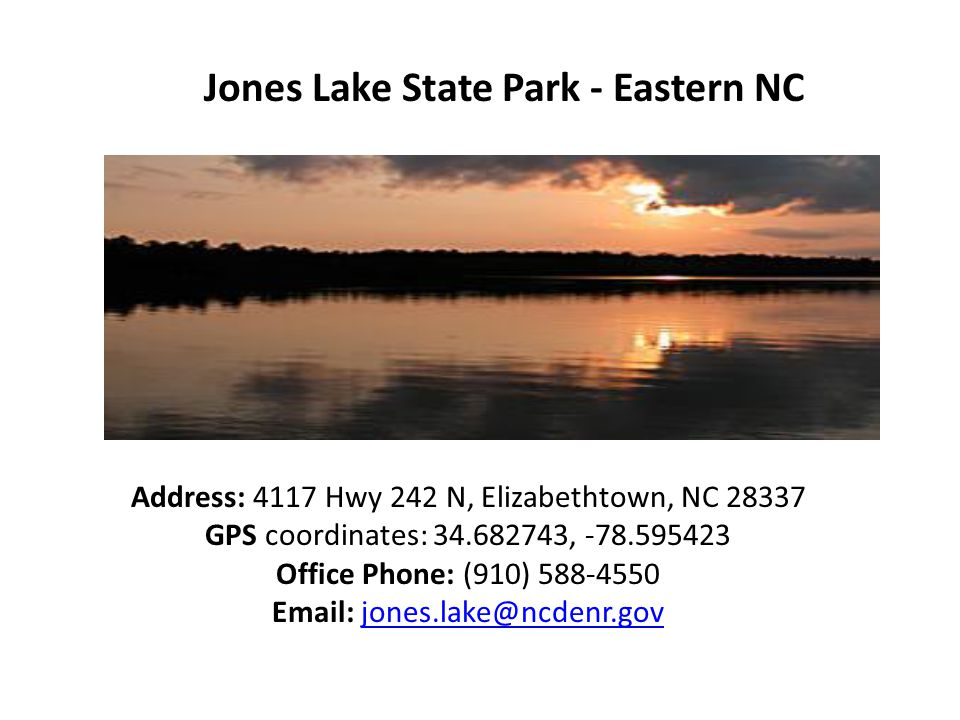 Jones Lake State Park - Eastern NC Address: 4117 Hwy 242 N, Elizabethtown, NC 28337 GPS coordinates: 34.682743, -78.595423 Office Phone: (910) 588-4550 Email: jones.lake@ncdenr.govjones.lake@ncdenr.gov