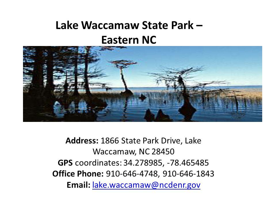 Lake Waccamaw State Park – Eastern NC Address: 1866 State Park Drive, Lake Waccamaw, NC 28450 GPS coordinates: 34.278985, -78.465485 Office Phone: 910