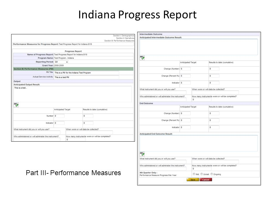 Indiana Progress Report Part III- Performance Measures