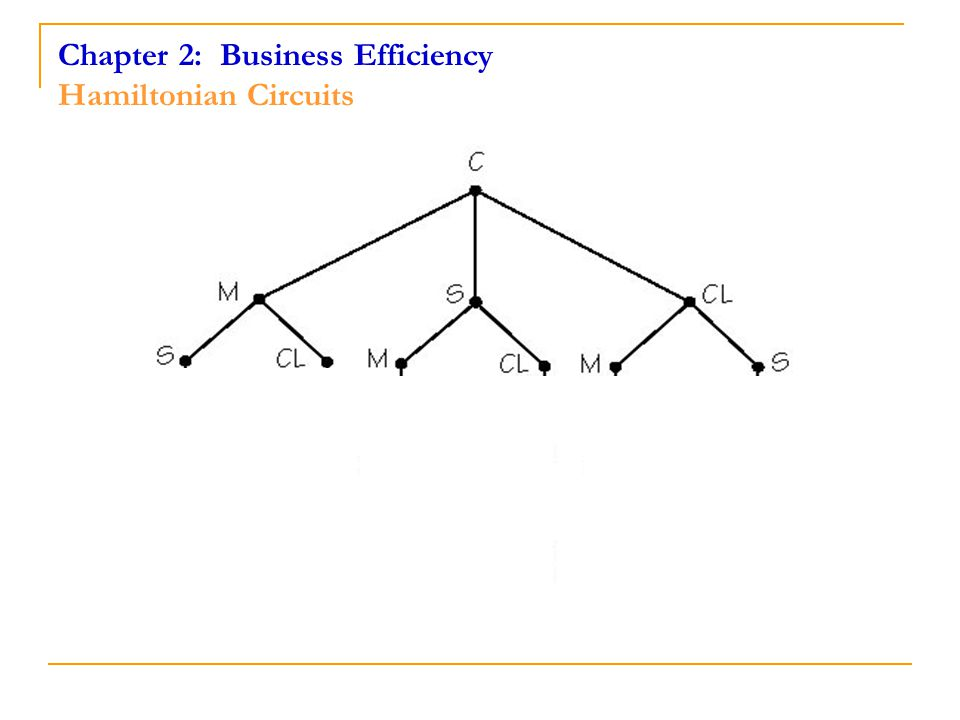 Chapter 2: Business Efficiency Hamiltonian Circuits