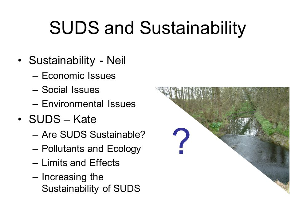 SUDS and Sustainability Sustainability - Neil –Economic Issues –Social Issues –Environmental Issues SUDS – Kate –Are SUDS Sustainable.