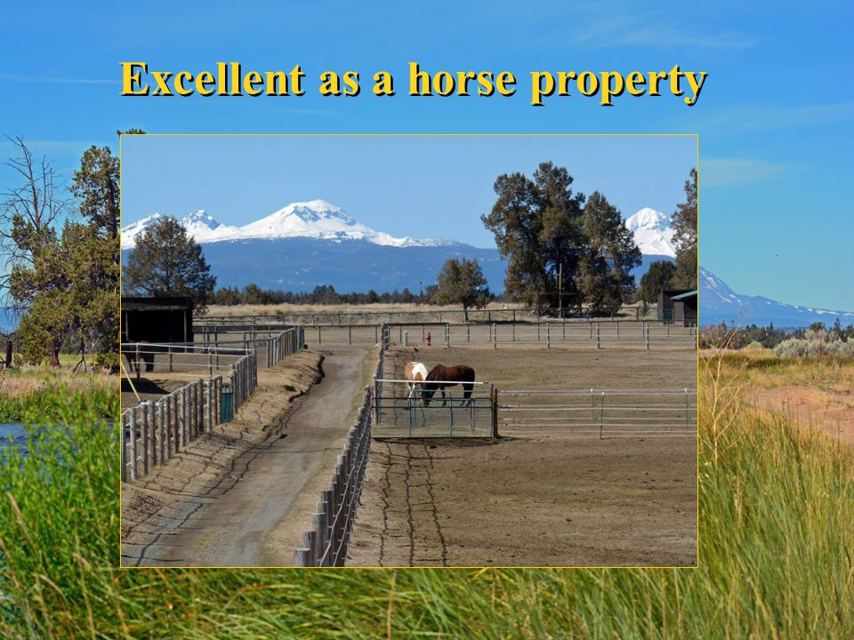 Excellent as a horse property