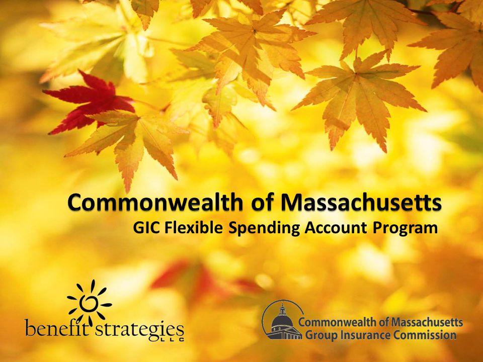 Agenda Welcome & Introductions Payroll Coordinator Packets Flexible Spending Account Administration How You Can Help How Benefit Strategies Can Help You Questions / Wrap-up 2
