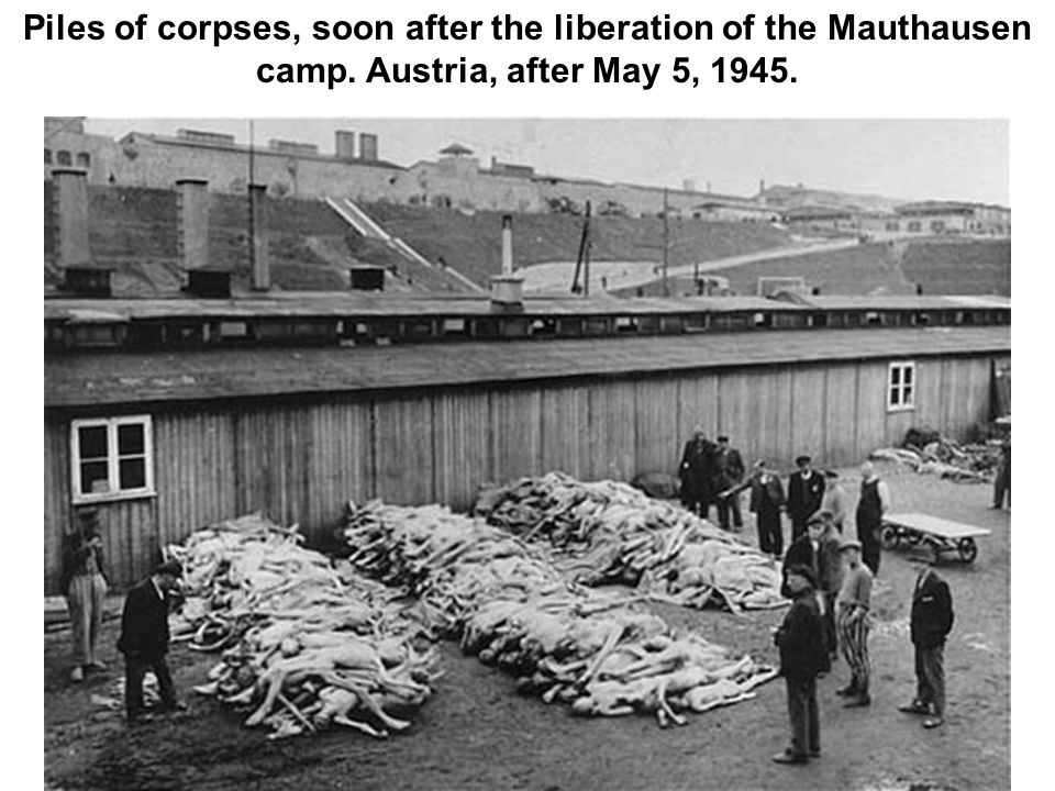 Piles of corpses, soon after the liberation of the Mauthausen camp. Austria, after May 5, 1945.