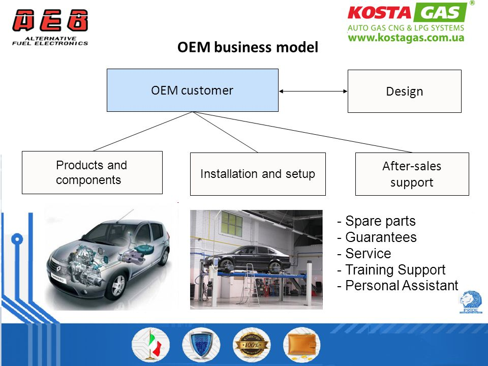 OEM business model Products and components Installation and setup After-sales support - Spare parts - Guarantees - Service - Training Support - Personal Assistant OEM customer Design