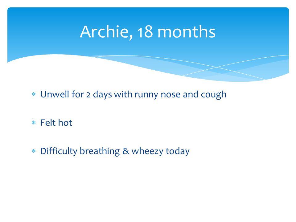  Examination  Coryzal  Mild subcostal recession  Quiet wheeze throughout chest Archie, 18 months