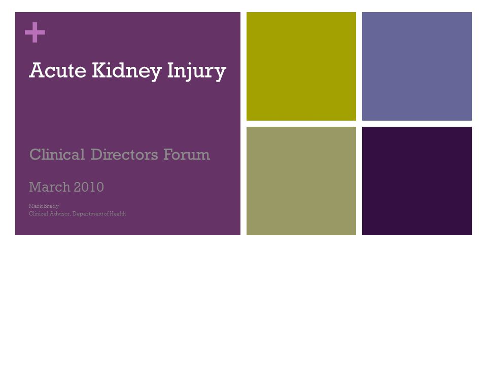+ Acute Kidney Injury Clinical Directors Forum March 2010 Mark Brady Clinical Advisor, Department of Health