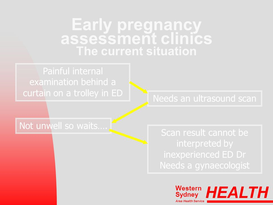 HEALTH Area Health Service Western Sydney Early pregnancy assessment clinics The current situation Not unwell so waits…. Needs an ultrasound scan Pain