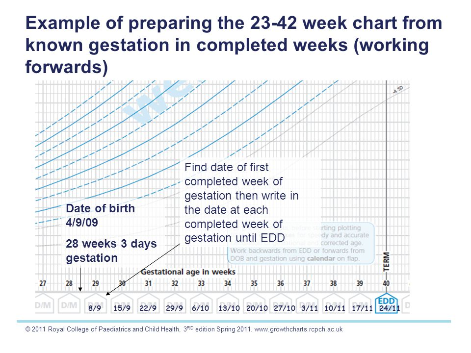© 2011 Royal College of Paediatrics and Child Health, 3 RD edition Spring 2011. www.growthcharts.rcpch.ac.uk Example of preparing the 23-42 week chart