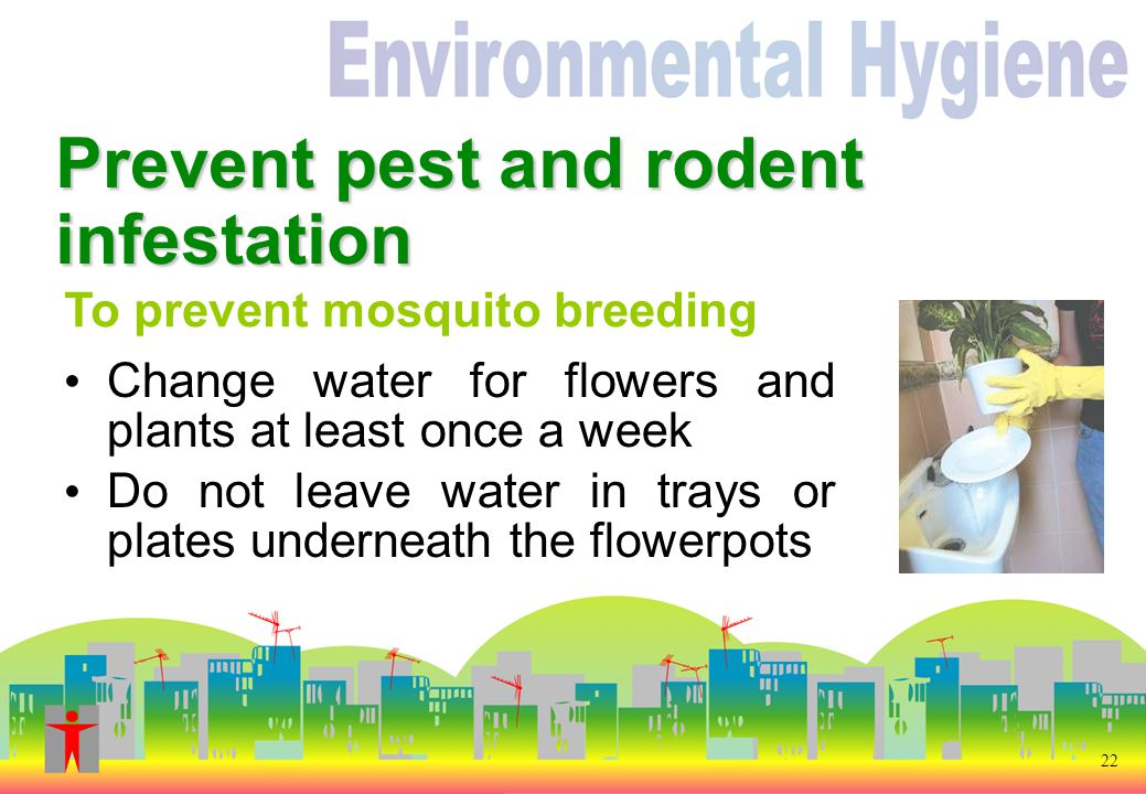 Prevent pest and rodent infestation To prevent mosquito breeding 22 Change water for flowers and plants at least once a week Do not leave water in trays or plates underneath the flowerpots