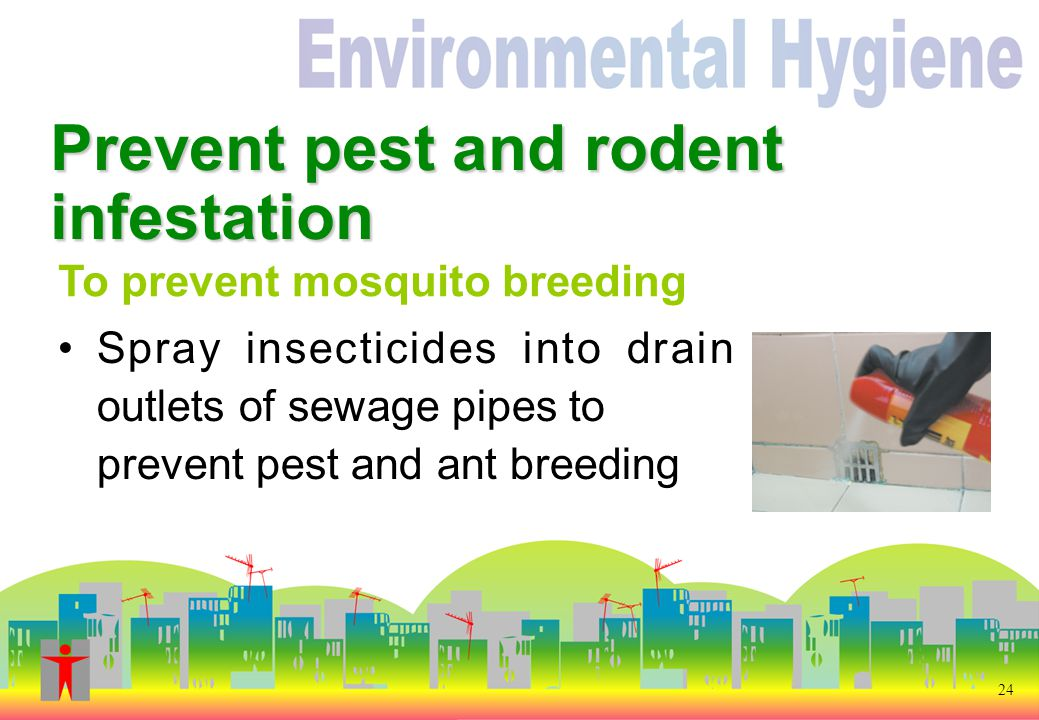24 Prevent pest and rodent infestation Spray insecticides into drain outlets of sewage pipes to prevent pest and ant breeding To prevent mosquito breeding