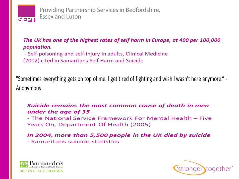 Aida Aliu Participation Development Officer SEPT/Barnardo's aida.aliu@sept.nhs.uk Telephone: 01268 247125