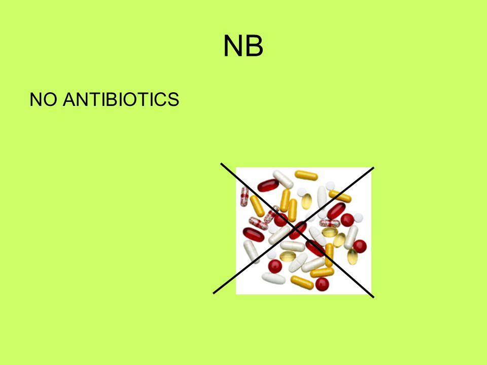 NB NO ANTIBIOTICS