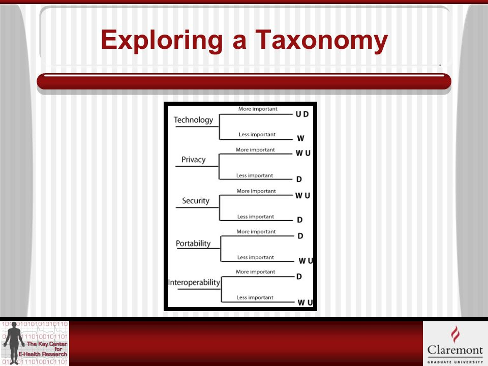 Exploring a Taxonomy