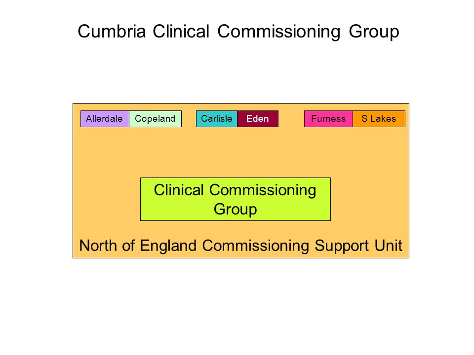 North of England Commissioning Support Unit Clinical Commissioning Group AllerdaleCarlisleCopelandEdenFurnessS Lakes Cumbria Clinical Commissioning Gr