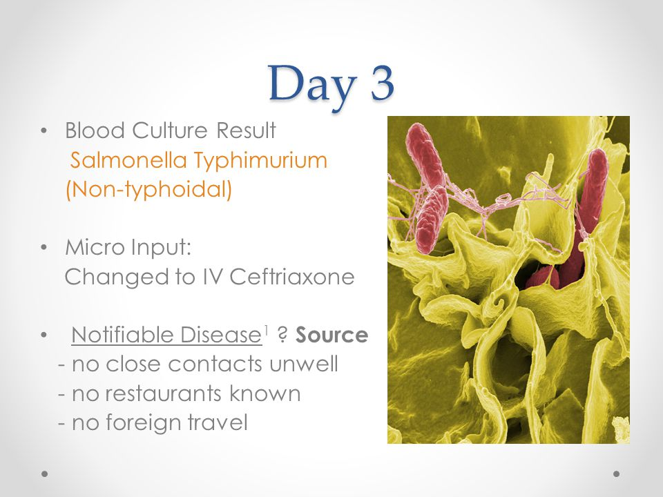 Day 3 Blood Culture Result Salmonella Typhimurium (Non-typhoidal) Micro Input: Changed to IV Ceftriaxone Notifiable Disease 1 ? Source - no close cont