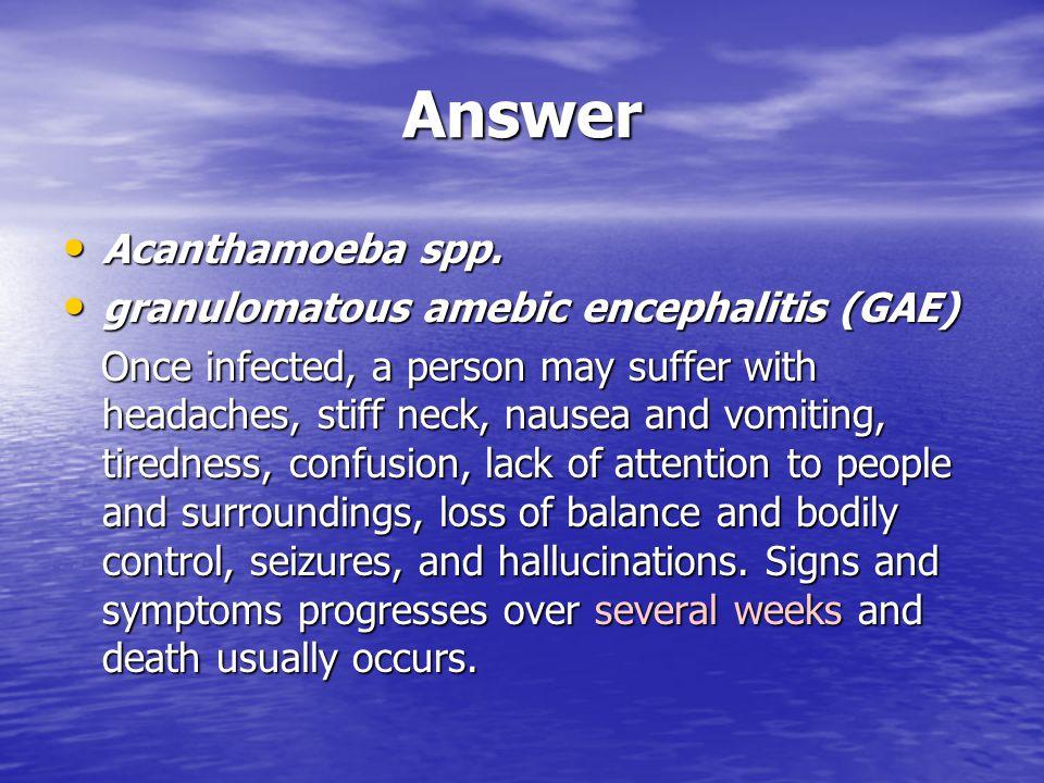 Answer Acanthamoeba spp. Acanthamoeba spp. granulomatous amebic encephalitis (GAE) granulomatous amebic encephalitis (GAE) Once infected, a person may