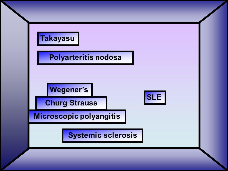 Takayasu SLE Wegener's Systemic sclerosis Microscopic polyangitis Churg Strauss Polyarteritis nodosa