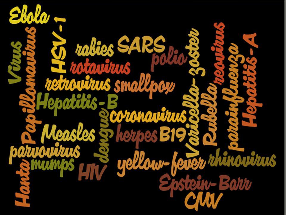 32 Burkitt lymphoma B-lymphocyte tumor associated with chronic EBV infection