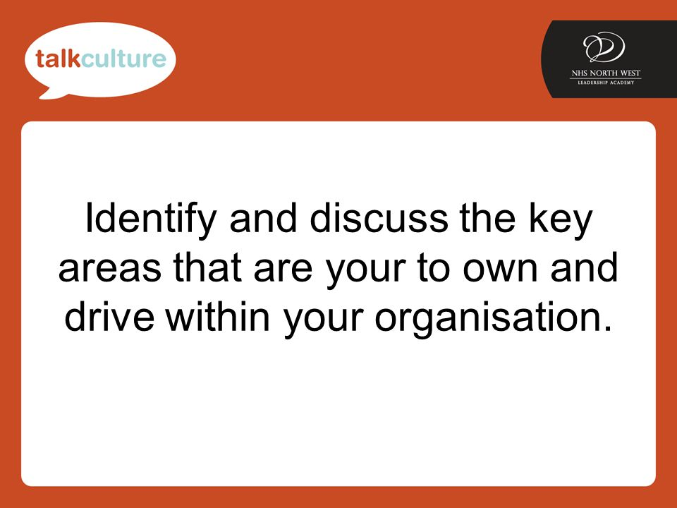 Identify and discuss the key areas that are your to own and drive within your organisation.