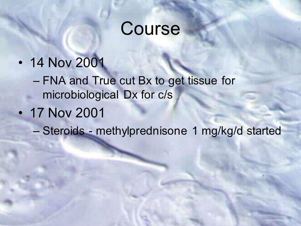 14 Nov 2001 –FNA and True cut Bx to get tissue for microbiological Dx for c/s 17 Nov 2001 –Steroids - methylprednisone 1 mg/kg/d started Course