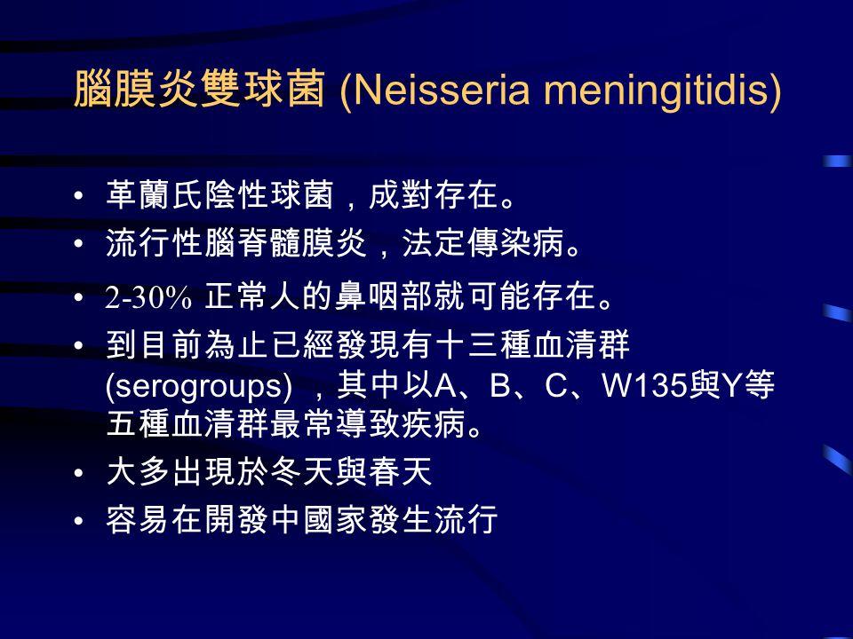 腦膜炎雙球菌 (Neisseria meningitidis) 革蘭氏陰性球菌,成對存在。 流行性腦脊髓膜炎,法定傳染病。 2-30% 正常人的鼻咽部就可能存在。 到目前為止已經發現有十三種血清群 (serogroups) ,其中以 A 、 B 、 C 、 W135 與 Y 等 五種血清群最常導致疾病。 大多出現於冬天與春天 容易在開發中國家發生流行