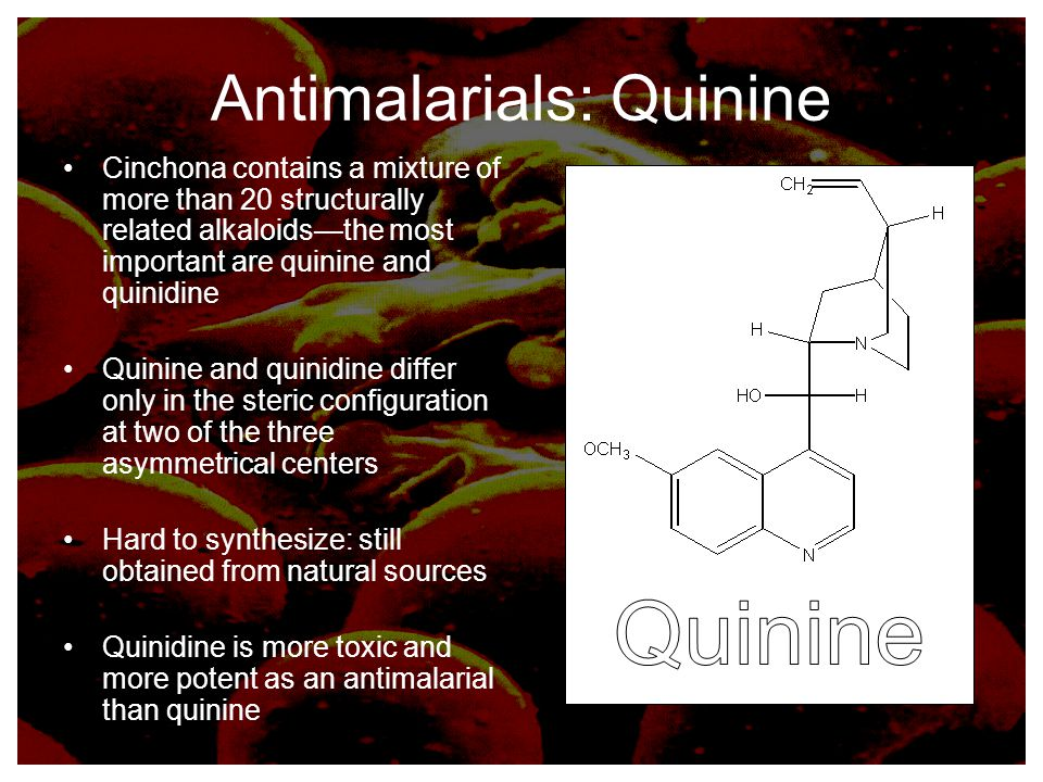 Antimalarials: Quinine Cinchona contains a mixture of more than 20 structurally related alkaloids—the most important are quinine and quinidine Quinine