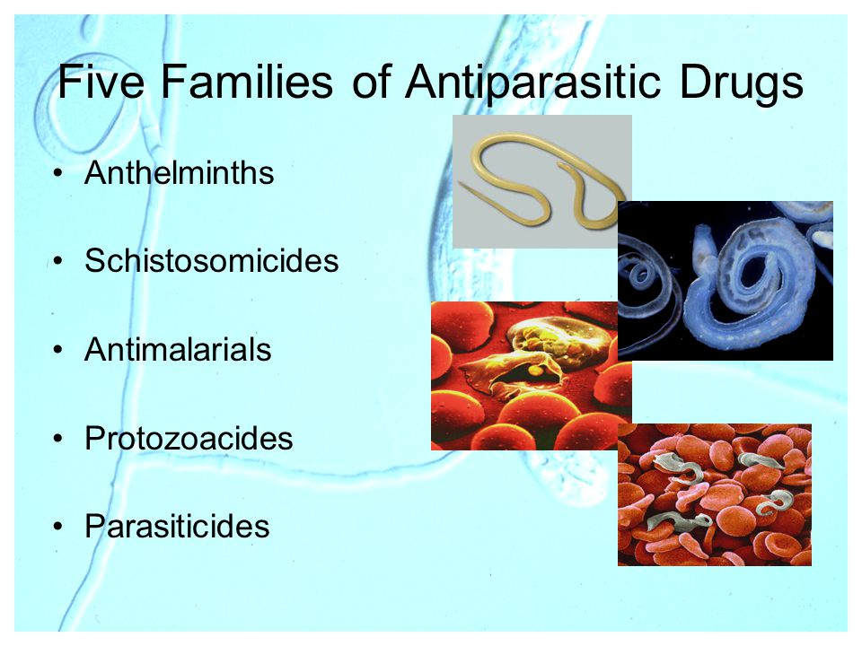Five Families of Antiparasitic Drugs Anthelminths Schistosomicides Antimalarials Protozoacides Parasiticides
