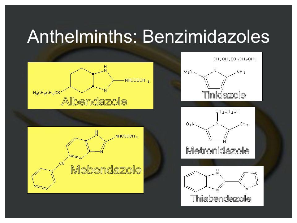 Anthelminths: Benzimidazoles