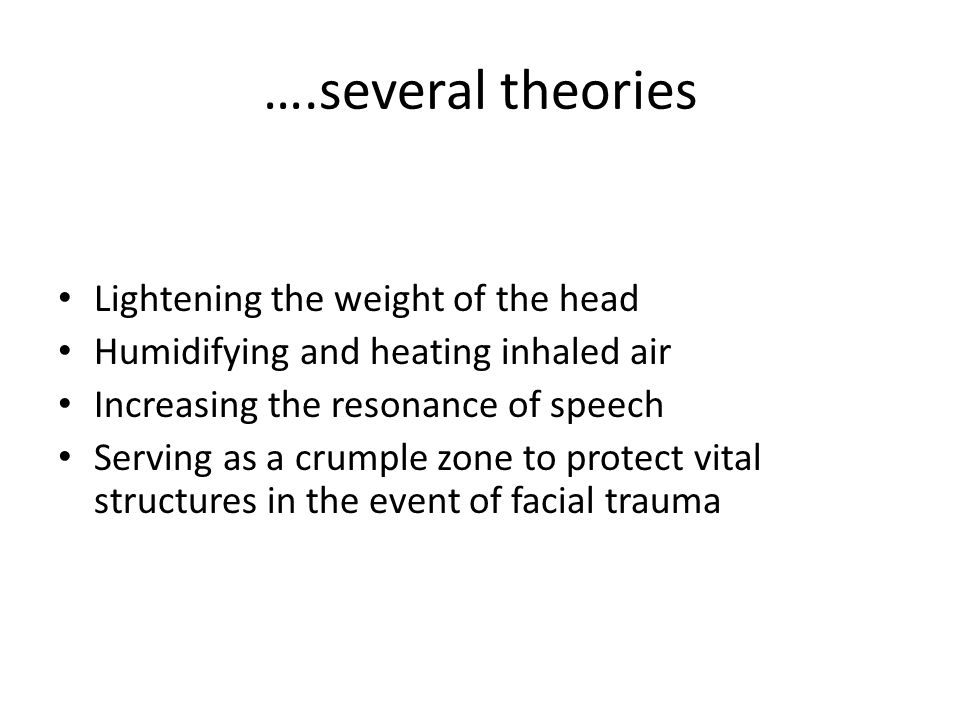 ….several theories Lightening the weight of the head Humidifying and heating inhaled air Increasing the resonance of speech Serving as a crumple zone