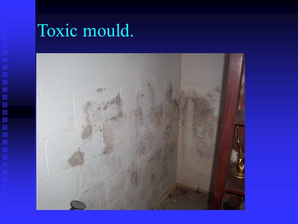 Toxic mould.
