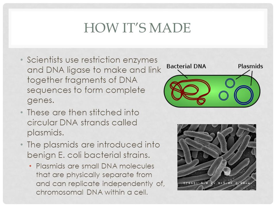 HOW IT'S MADE Scientists use restriction enzymes and DNA ligase to make and link together fragments of DNA sequences to form complete genes.
