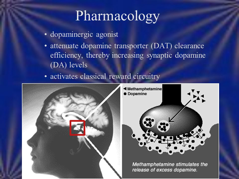 Pharmacology dopaminergic agonist attenuate dopamine transporter (DAT) clearance efficiency, thereby increasing synaptic dopamine (DA) levels activate
