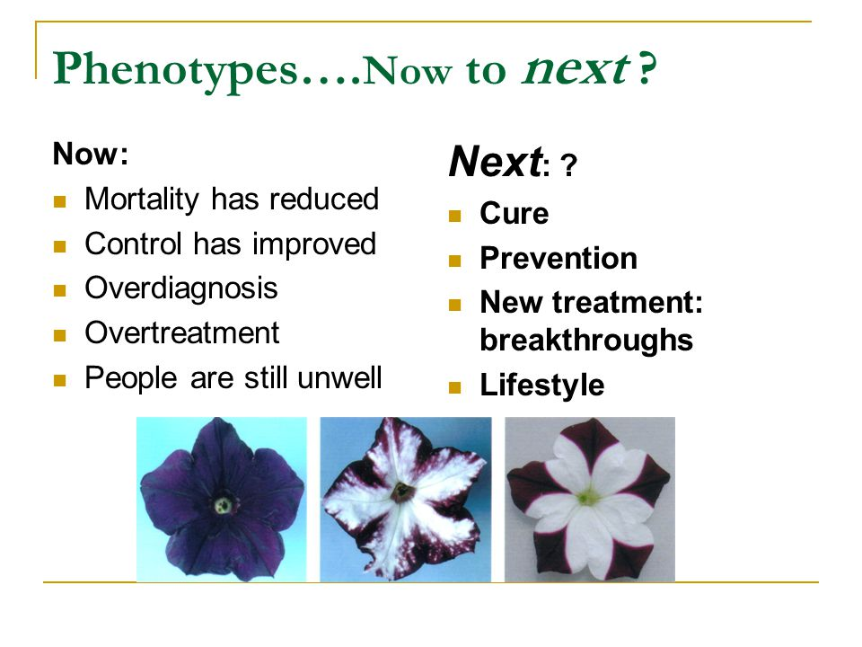 Phenotypes….Now to next .