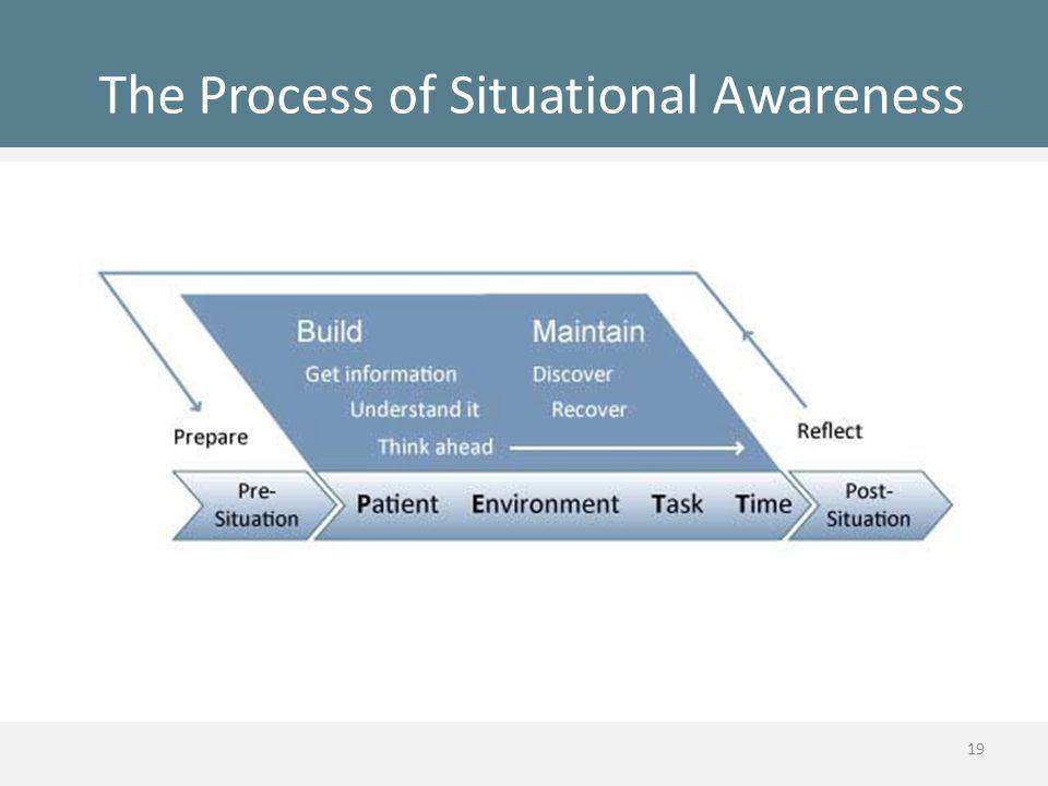 The Process of Situational Awareness 19