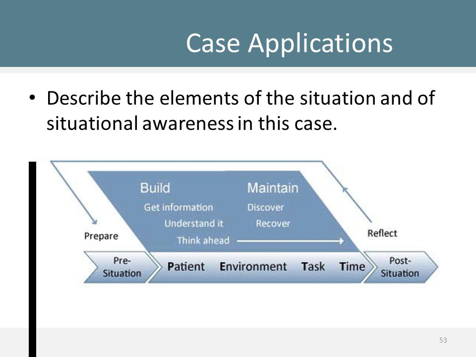 Describe the elements of the situation and of situational awareness in this case. Case Applications 53