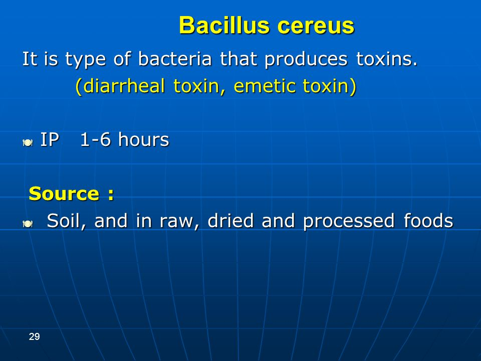 Bacillus cereus It is type of bacteria that produces toxins.