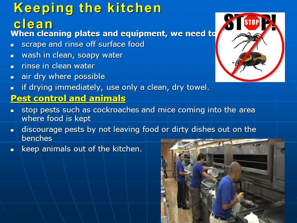 When cleaning plates and equipment, we need to: scrape and rinse off surface food scrape and rinse off surface food wash in clean, soapy water wash in clean, soapy water rinse in clean water rinse in clean water air dry where possible air dry where possible if drying immediately, use only a clean, dry towel.