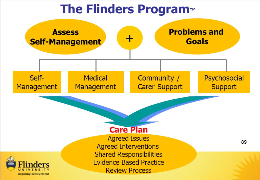 89 Care Plan Agreed Issues Agreed Interventions Shared Responsibilities Evidence Based Practice Review Process The Flinders Program ™ Problems and Goals + Assess Self-Management Psychosocial Support Community / Carer Support Self- Management Medical Management