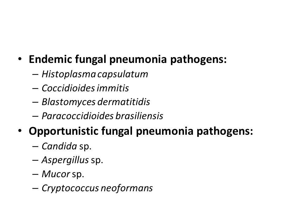 Endemic fungal pneumonia pathogens: – Histoplasma capsulatum – Coccidioides immitis – Blastomyces dermatitidis – Paracoccidioides brasiliensis Opportunistic fungal pneumonia pathogens: – Candida sp.