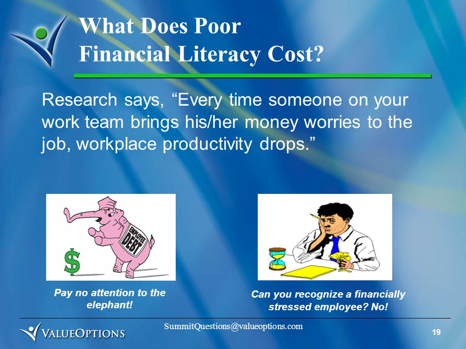 19 SummitQuestions@valueoptions.com What Does Poor Financial Literacy Cost.