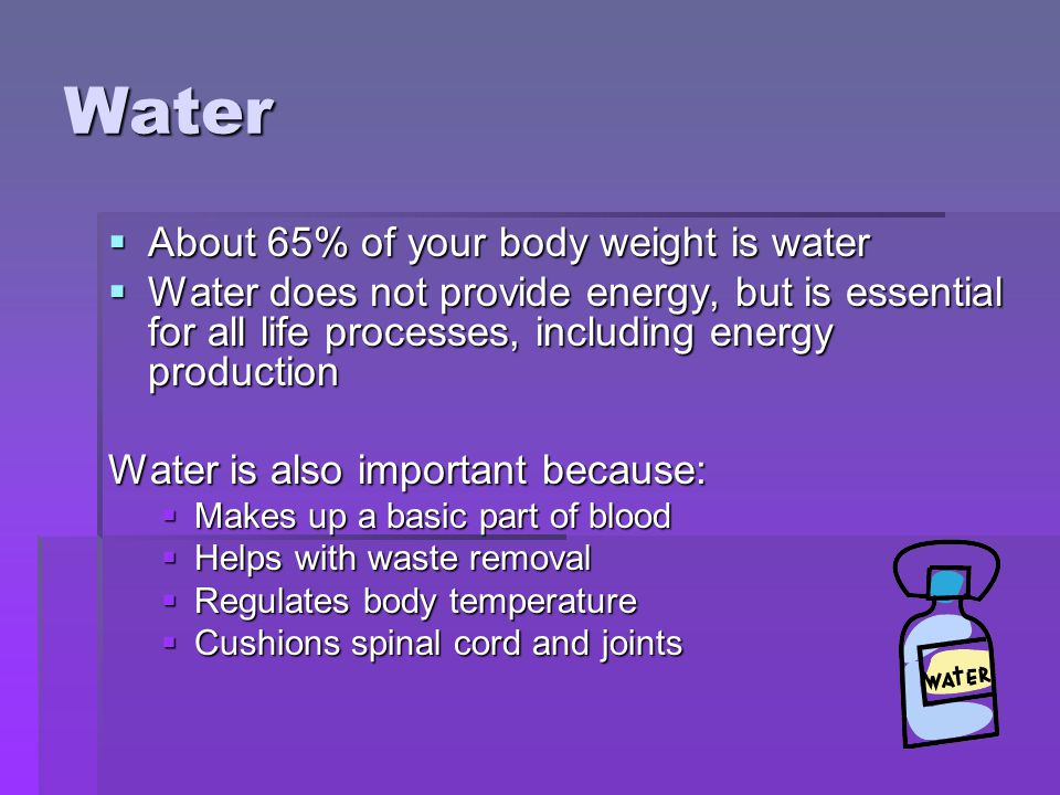 Water  About 65% of your body weight is water  Water does not provide energy, but is essential for all life processes, including energy production Water is also important because:  Makes up a basic part of blood  Helps with waste removal  Regulates body temperature  Cushions spinal cord and joints
