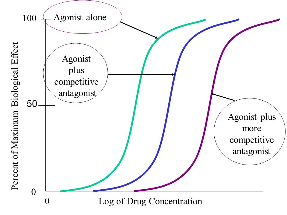 100 Log of Drug Concentration 0 Percent of Maximum Biological Effect 50 Agonist alone Agonist plus competitive antagonist Agonist plus more competitive antagonist 0